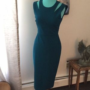 NWT CALVIN KLEIN cypress dress sz 4